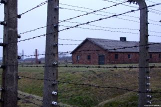 تصاویری از بزرگترین اردوگاه مرگ،هفتاد سال بعد از آزادی…..ادامه مطلب را در وبلاگ بخوانید